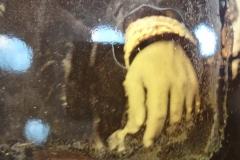 Linke Hand Napoléon III